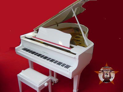 location accord piano nice monaco expertise vente piano concert